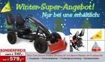 Winter Super Angebot! Dino Cars Gokart linostar Shadow AF inkl. Zusatzsitz & Fahne & Schneeschieber